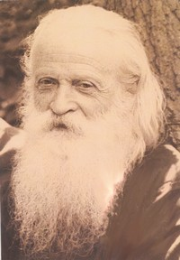 архимандрит Сергий (Шевич)